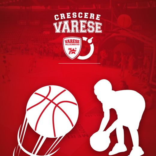 Ball Boy Special Pack | Pallacanestro Varese | Triboom